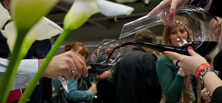 salon vina